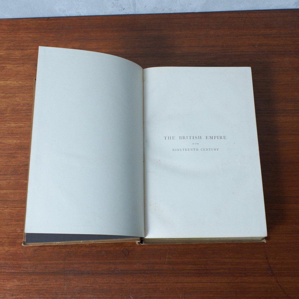 #42972 アールヌーボー スタイル アンティーク 洋書 コンディション画像 - 9
