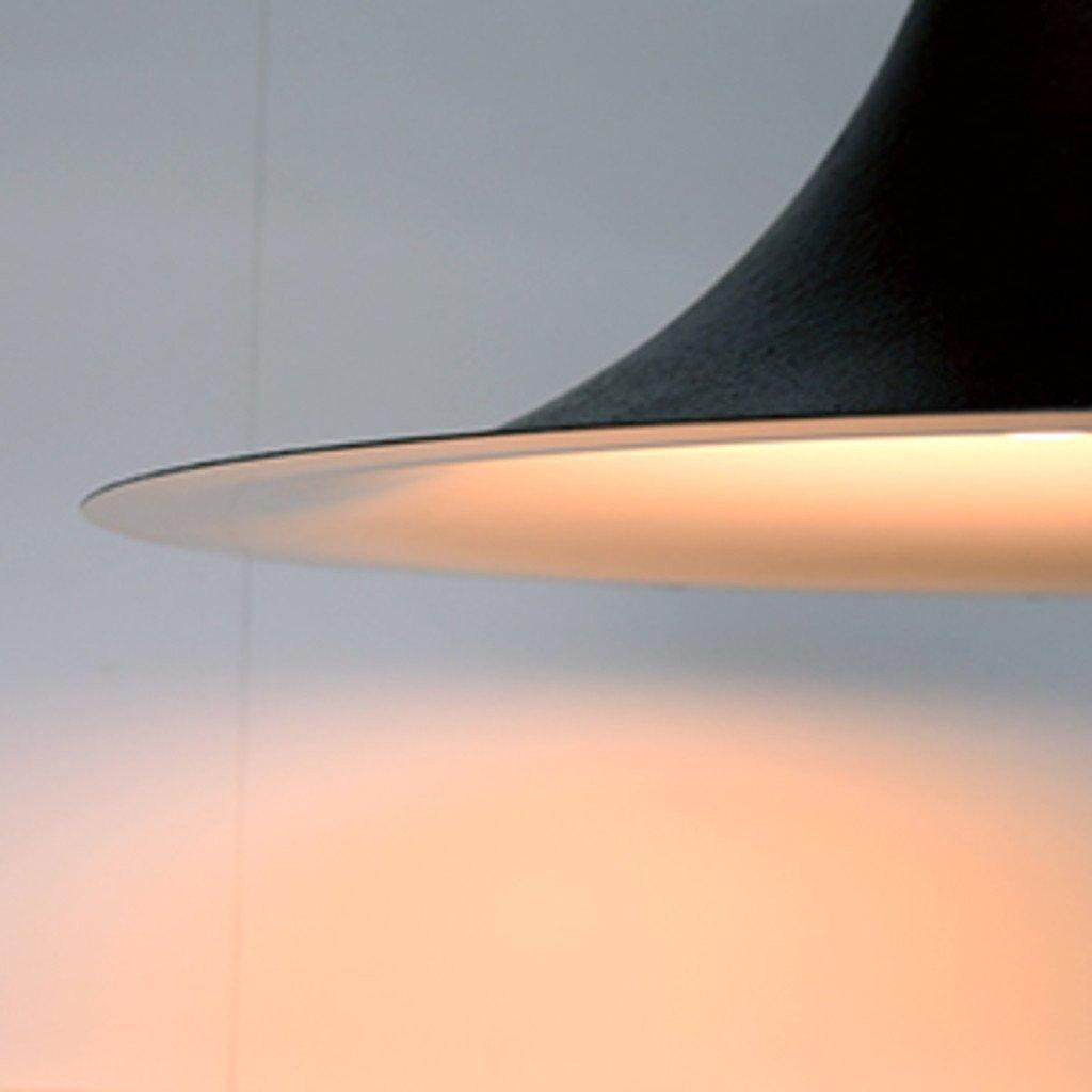 #33821 Rona ペンダントランプ / L 鋳鉄風 ブラック コンディション画像 - 11
