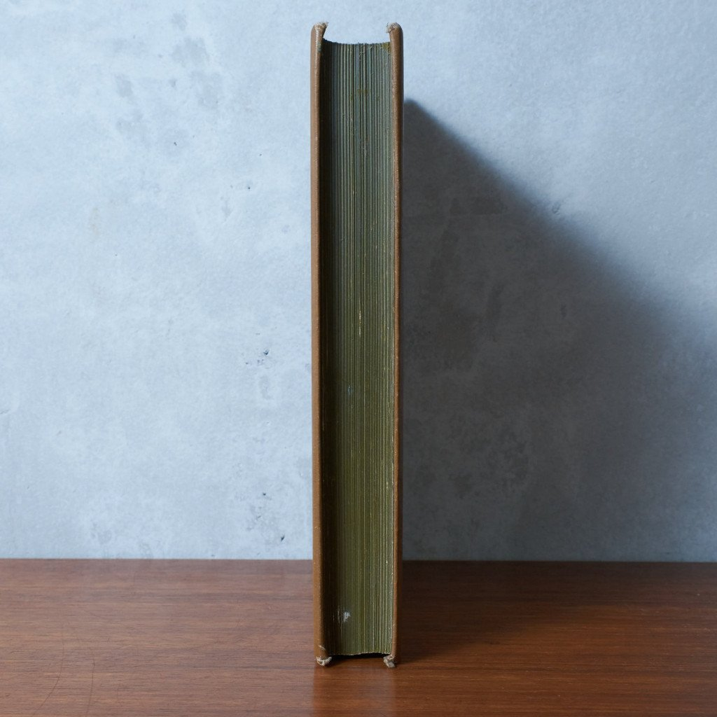 #42972 アールヌーボー スタイル アンティーク 洋書 コンディション画像 - 15