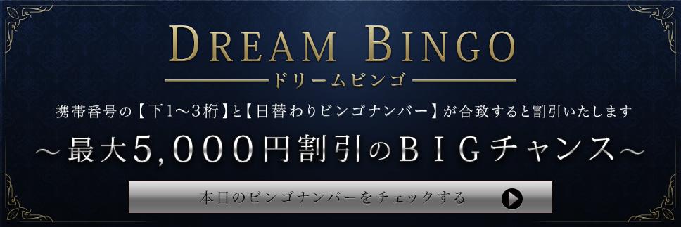 DREAM BINGO「5,000円割引」のチャンス