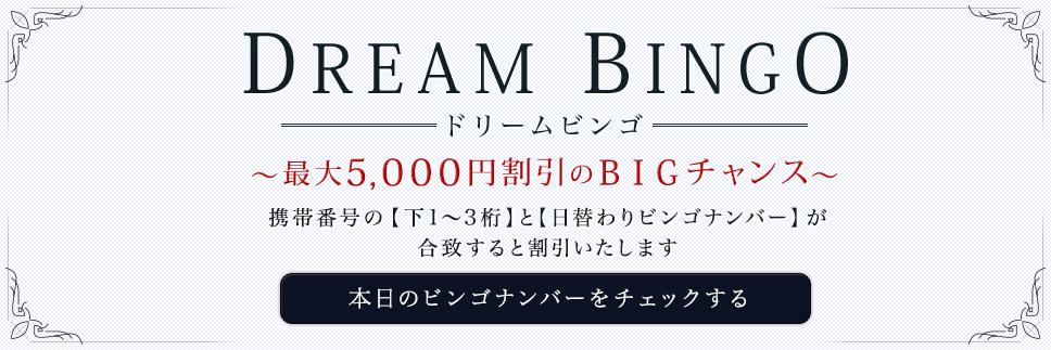 最大5,000円割引のBIGチャンス「ドリームビンゴ」