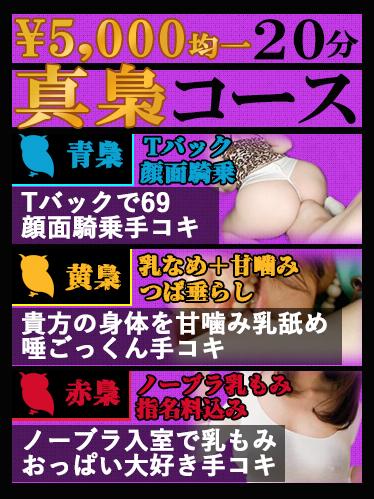 「3種の真梟コース」好評続投決定!