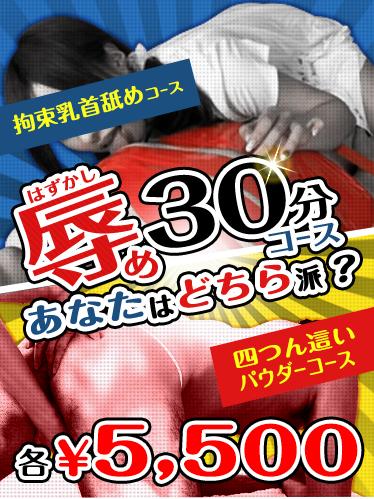★辱め30分コース★是非この機会にご利用ください( *´艸`)