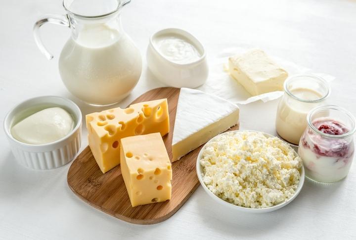 乳酸菌を含む食べ物
