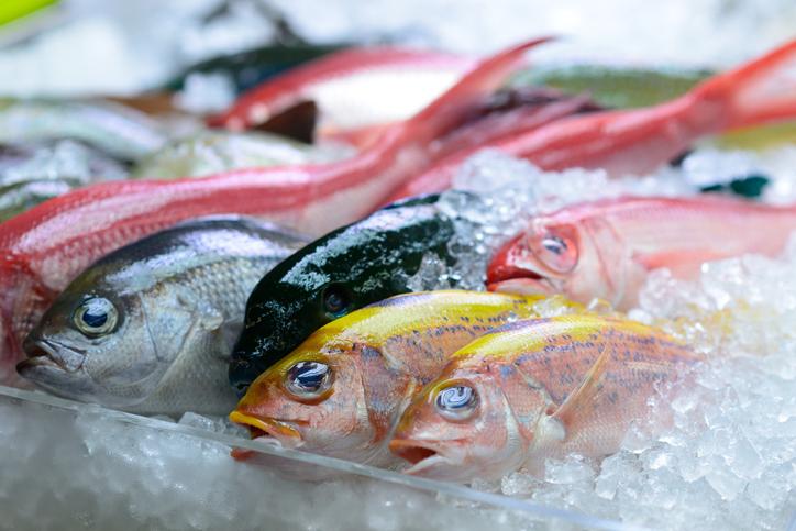 魚介セット